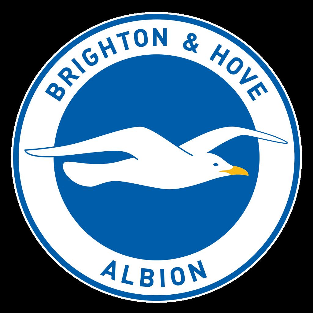 Brighton & Hove Albion Football Club
