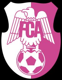 Fotbal Club Argeș Pitești