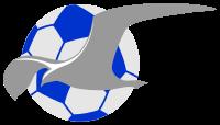 Fotballklubben Haugesund