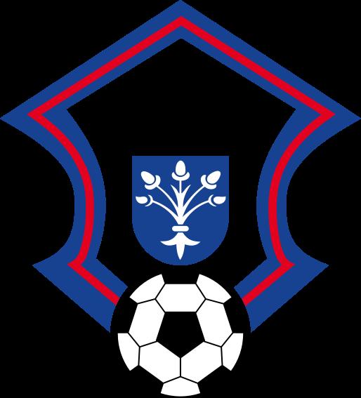 Mestský futbalový klub Dubnica