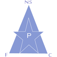 New Stars CNI-UIC de Douala