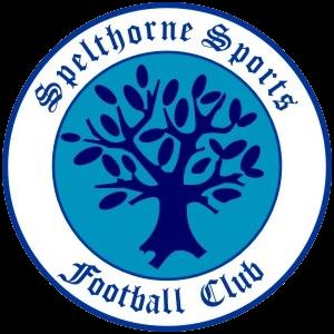 Spelthorne Sports FC